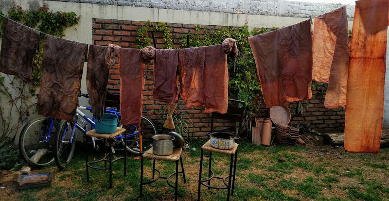 Dyeing cloth with avocado